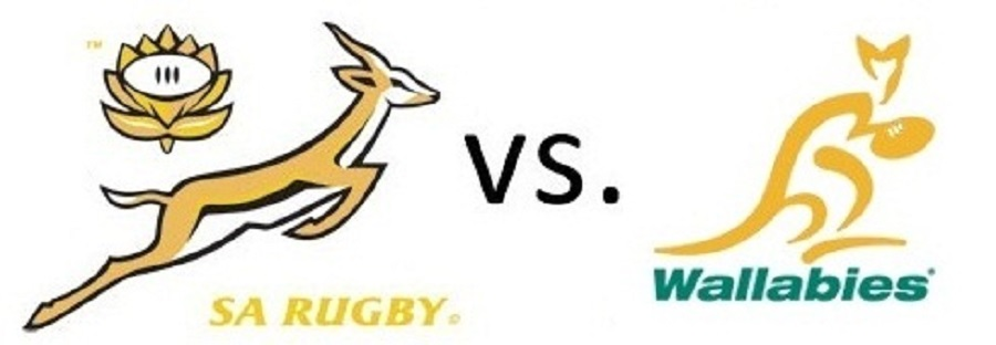 springboks-vs-wallabies1